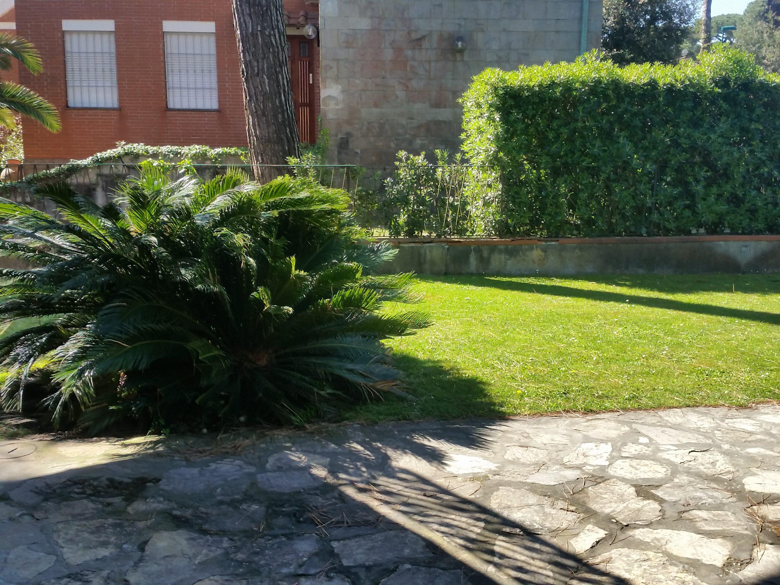 Bilocale con giardino a Tirrenia Rif.A.47